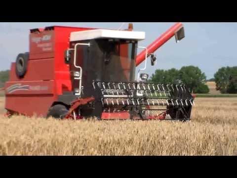 Mähdrescher Hege MDW Farmer 220 CS, Ernte 2013
