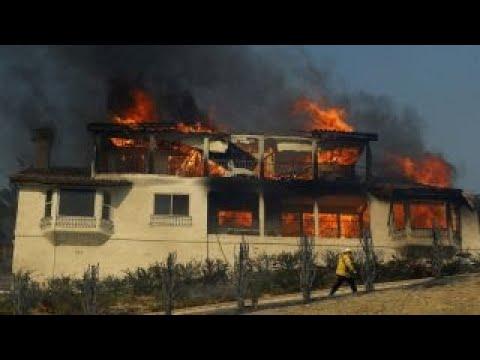 Wildfires blaze through Los Angeles area