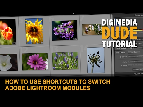 How To Use Shortcuts To Switch Adobe Lightroom Modules