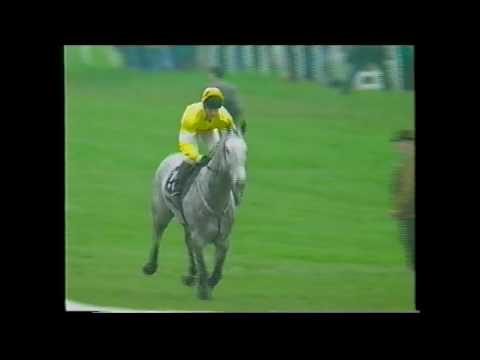 1994 Hennessy Gold Cup Newbury One Man