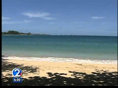 First confirmed Japan tsunami debris found in Hawaii