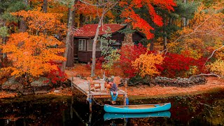Cozy Cabin Autumn Escape with my Dog