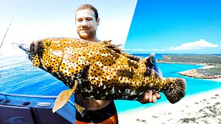 Flooded In With Limited Food 3 DAYS LIVING FROM THE OCEAN (Amazing Baby Turtles) - Ep 279