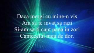 Despre Tine - Ozone (with lycris)
