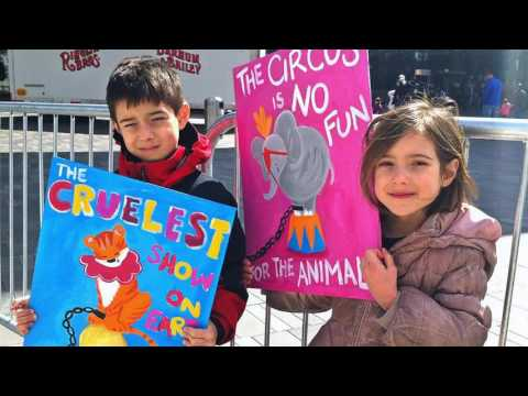 Animal Protection: An American Movement   -   Exhibition Preview