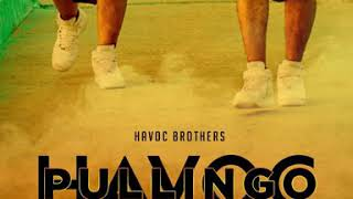 Havoc Pullingo - HAVOC BROTHERS // OFFICIAL SONG PROMO 2020