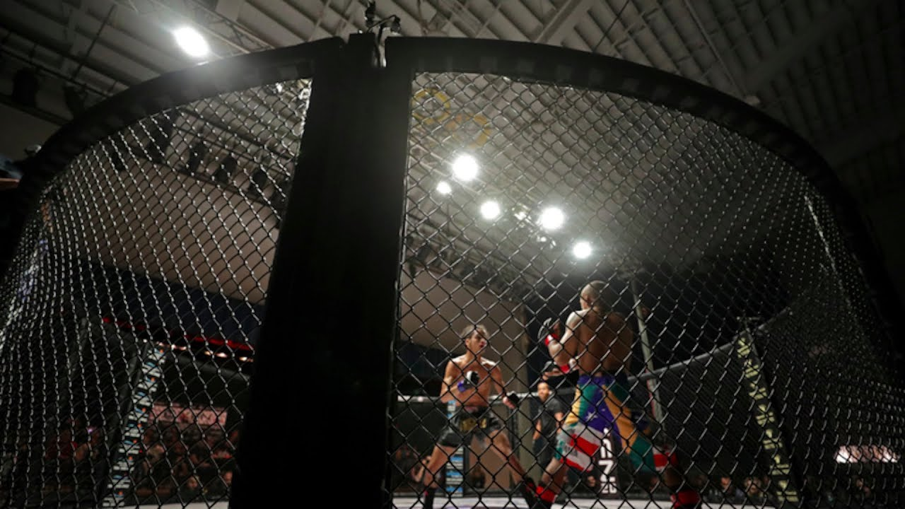 What's it like inside the cage?