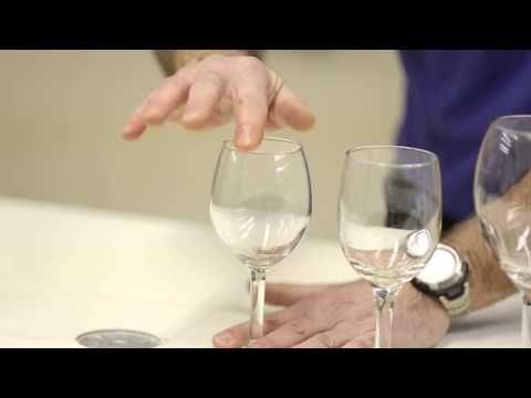 Easy science experiment: Musical wine glasses