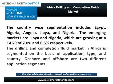 Africa Drilling and Completion Fluids Market