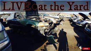LIVE at the junkyard thumbnail