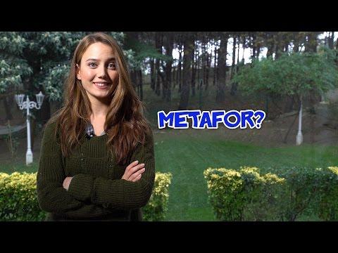 Metafor Nedir?