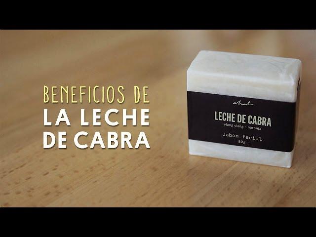 Jabon De Leche De Burra Que Es Y Cuales Son Sus Beneficios E Consejos