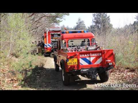 Brand verwoest 2 hectare natuurgebied langs Schelmseweg - Rozendaal 09 04 2017