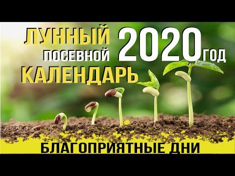 КАК УВЕЛИЧИТЬ УРОЖАЙ? ЛУННЫЙ ПОСЕВНОЙ КАЛЕНДАРЬ на 2020 год, АГРОМАРКЕТ