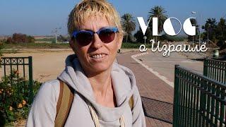 VLOG   Знакомство с израильским селом   Домашнее обучение
