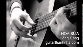HOA SỮA - Guitar Solo
