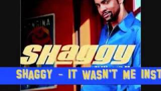 Shaggy - It Wasn