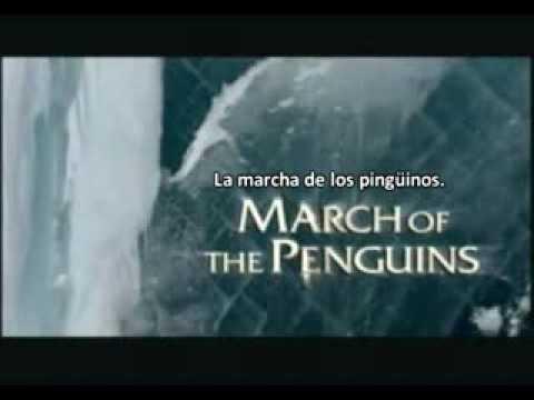 (TGWTG) Películas en 5 segundos: March of the Penguins