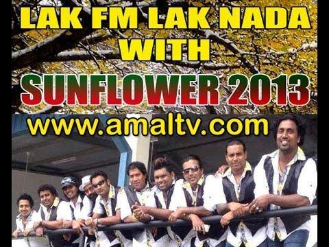 LAK FM LAK NADA NIGHT SUNFLOWER 2013 - WWW.AMALTV.COM
