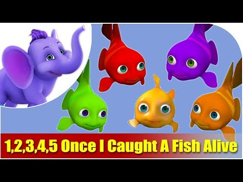 1,2,3,4,5 ce I Caught A Fish A Nursery Rhyme in 4K