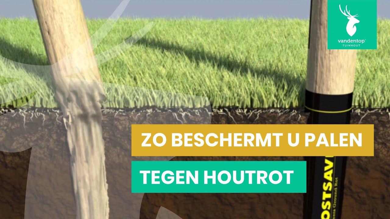 Tuin Houten Palen : Zo beschermt u palen tegen houtrot postsaver youtube