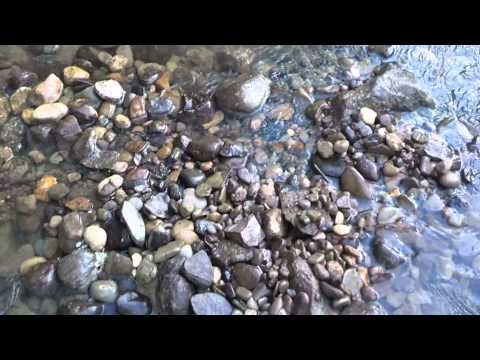 Gold Prospecting on Tuscarawas river Ohio  S3:E8