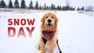 tucker-has-a-snow-day-vlog