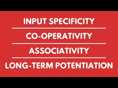 INPUT SPECIFICITY | CO-OPERATIVITY | ASSOCIATIVITY | LONG-TERM POTENTIATION