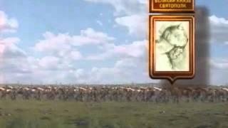 видео Восстание 1113 г.