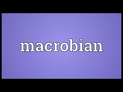 Macrobian Meaning