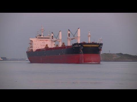 Scheepvaart in Rotterdam / Shipspotting / Hoek van Holland / Nieuwe Waterweg