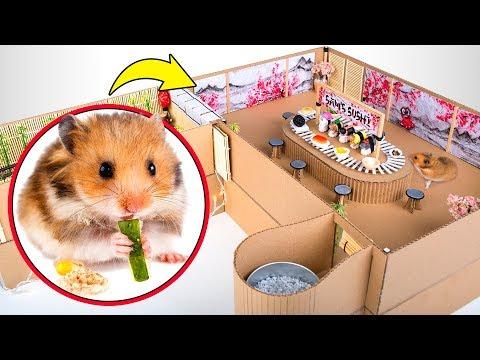 Un hamster salvaje en el sushi bar