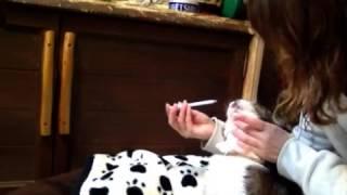 お薬の(お水)飲ませ方① 三宅梢子 動画 20