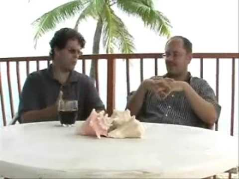 Dave Skarica And Mike Swanson Discuss Gold Stocks June 09