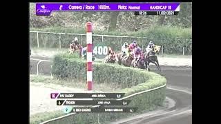 Vidéo de la course PMU PREMIO IL GIOTTO