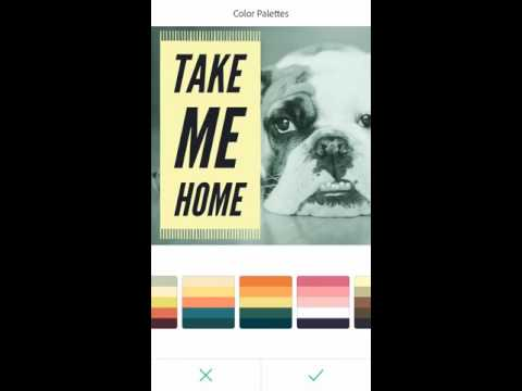 Adobe Spark Post for iOS