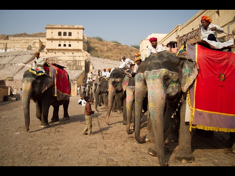 Subimos a lomos de elefante hacia el Amber Ford de Jaypur