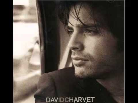 david charvet should i leave mp3
