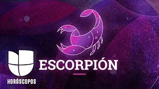 Escorpión - Semana del 18 al 24 de noviembre   Univision Horóscopos