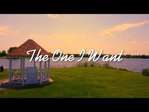 Josh Ross - The One I Want (Lyric Video)