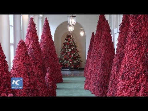 White House Unveils 2018 Christmas Decorations 4k60 Ultra Hd Youtube
