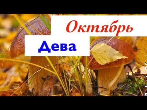 Дева _ гороскоп на Октябрь 2019 _ таро прогноз