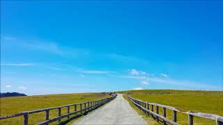 ヴィエニャフスキ: 華麗なるポロネーズ第1番 二長調 Op.4[ナクソス・クラシック・キュレーション #元気]