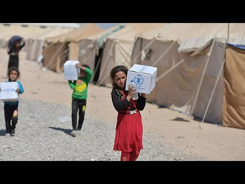 UN to resume aid deliveries in Syria