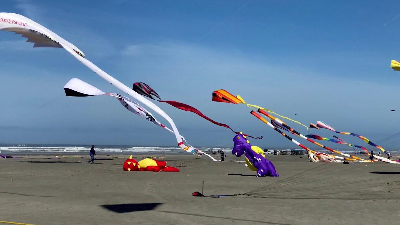Kite Festival Long Beach Wa 8 21 26 2017