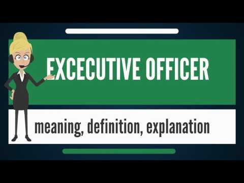 What is EXECUTIVE OFFICER? What does EXECUTIVE OFFICER mean?