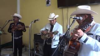Trío Los Hidalguenses - Mi Jacala