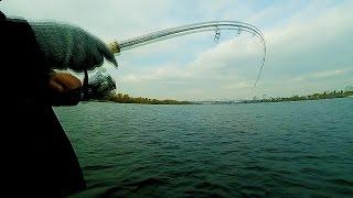 Снасть Для Ловли на Живца. Рыбалка на Днепре: Судак, Голавль, Окунь, Бычок