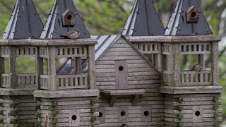 Extreme Birdhouses - Belgrave | Business Profile | Huroncountytv