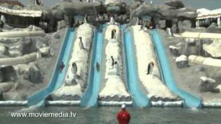 ICELAND Biggest water theme park in UAE